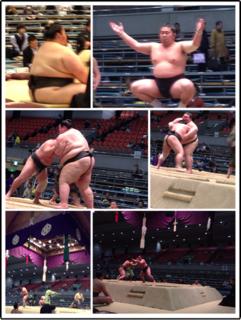 相撲1.png